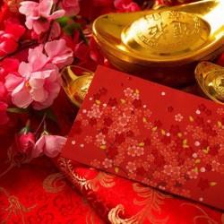 año nuevo chino: el mono de fuego