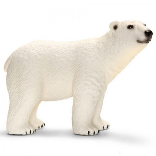 Oso polar disponible en: www.happyeureka.com